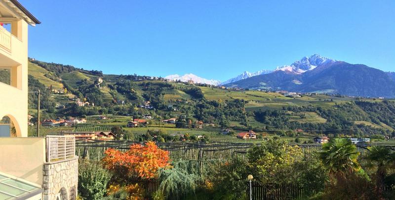Urlaub am Bauernhof in Tirol - Tirol - Österreich