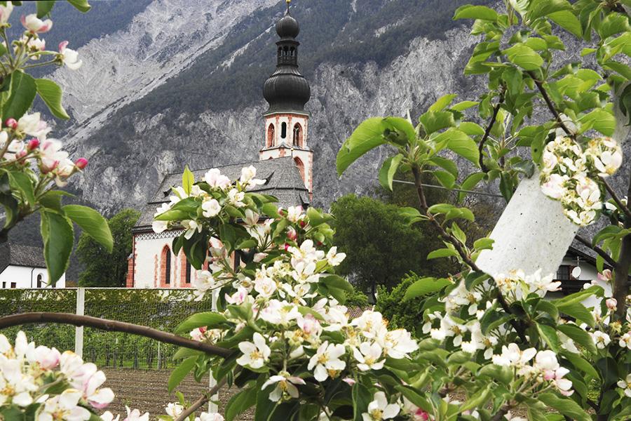 WIDIs Bummelzug, tztal, Tirol - Oetz